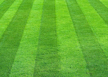 Lawn Mowing Services by Rasevic Landscape Company