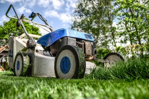 Lawn mower, cutting grass short is a garden maintenance myth