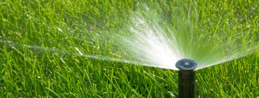 thrive in heat with in ground sprinkler lawn irrigation system