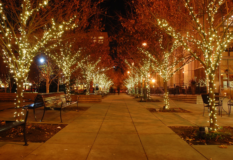 Christmas Light Installation Services - Commercial