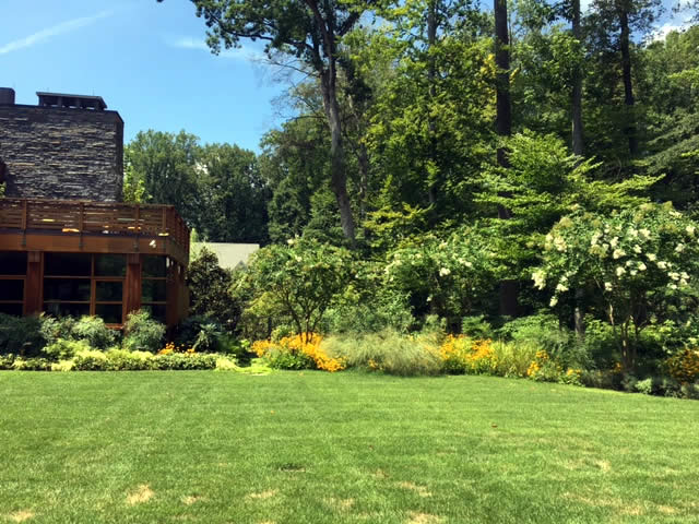 Bethesda Residence Landscaping Project by Rasevic Landscape Company in Bethesda, MD