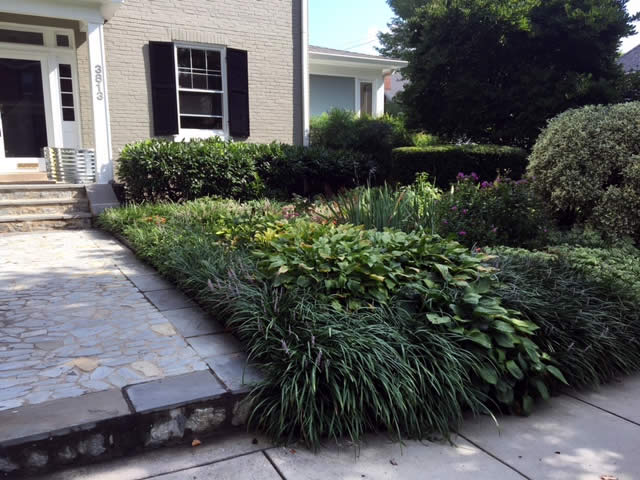 NW Washington DC Garden Landscaping Project by Rasevic Landscape Company in Bethesda, MD