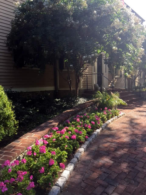 Chevy Chase Residence Landscaping Project by Rasevic Landscape Company in Bethesda, MD