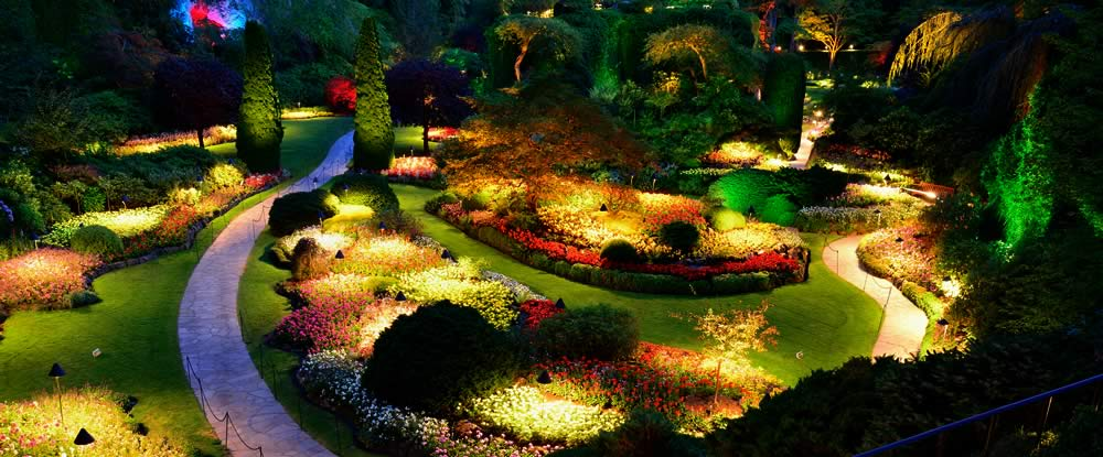 5 Incredible Benefits of Landscape Lighting  Garden Lights